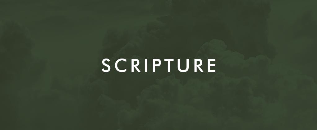 Week 5 Scripture